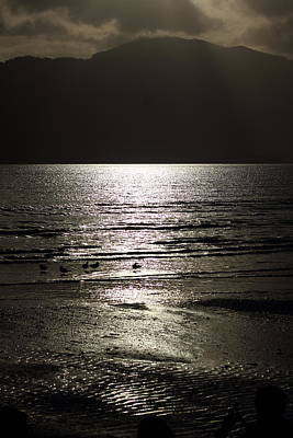Photograph - Moonlight Over Thewater by Debbie Cundy