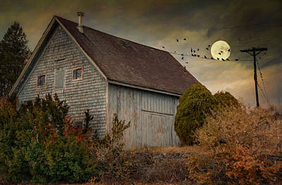 Photograph - Moonlight Serenade by Robin-Lee Vieira