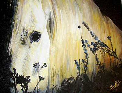 Forelock Painting - Moonlit Horse by Caroline  Reid