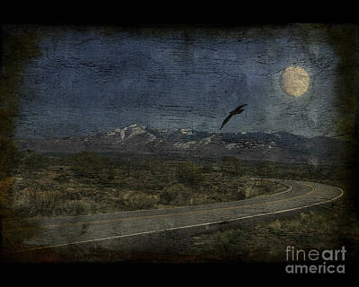 Photograph - Moonlit Road by Jim Wright