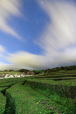 Moonlit Night Photograph - Moonlit Tea Plantation by Babak Tafreshi