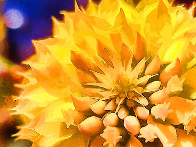 Photograph - Moonlit Yellow Flower by Beth Sawickie