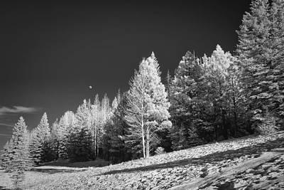 Photograph - Moonrise At Sunrise Az by Michael Yeager