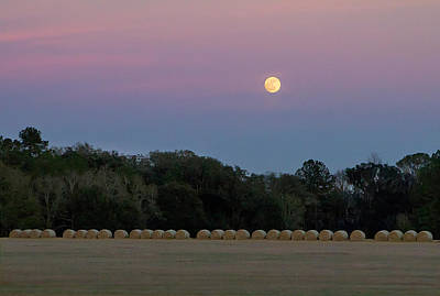 Photograph - Moonrise by Dan Wells