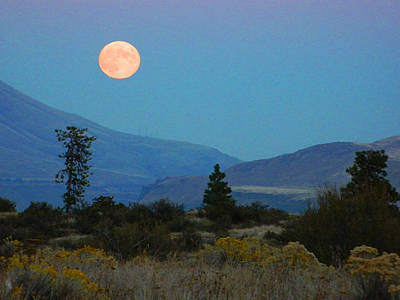 Photograph - Moonrise by Jacqueline  DiAnne Wasson