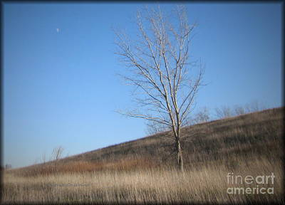 Photograph - Moonrise by Kathie Chicoine