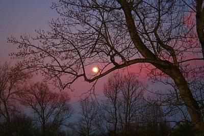Moonrise Art Print by Kathryn Meyer