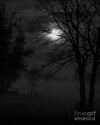 Photograph - Moonrise On A Foggy Meadow I by Chuck Flewelling