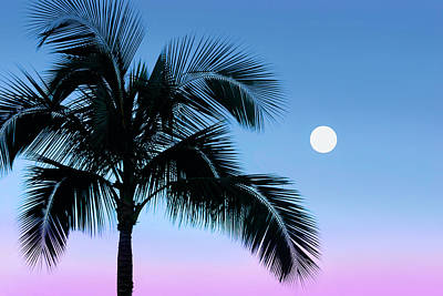Photograph - Moonrise Over Maui by Jane Girardot