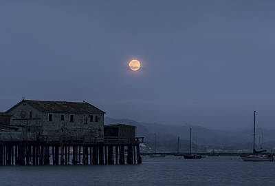 Photograph - Moonrise Over The Harbor by Alex Lapidus