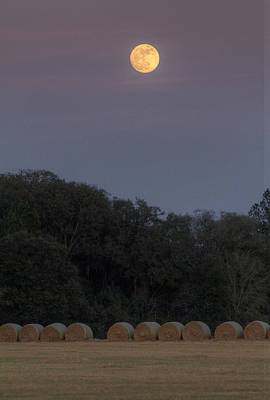 Photograph - Moonrise Too by Dan Wells