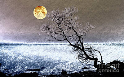 Photograph - Moonstruck by Charline Xia