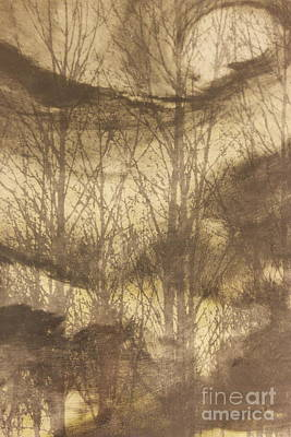 Winter Night Mixed Media - Untitled by  Talbot