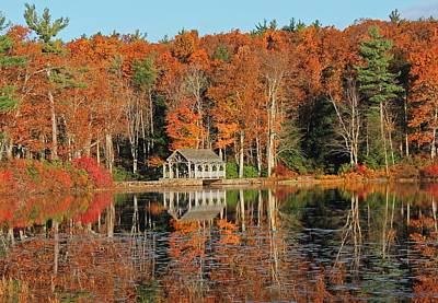 Lake Life - Moore State Park Autumn I by Michael Saunders