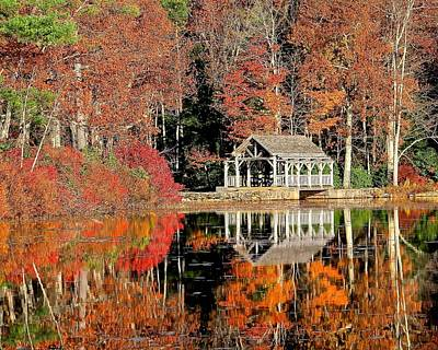 Photograph - Moore State Park Autumn II by Michael Saunders