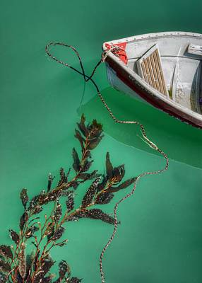 Photograph - Moored Boat And Kelp by Nikolyn McDonald