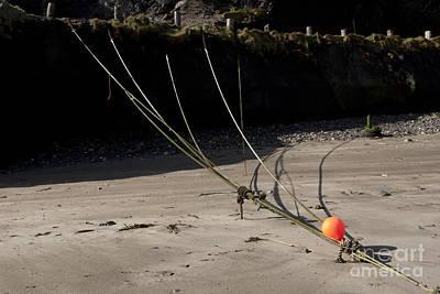 Photograph - Mooring Rope 6 by Paul Felix