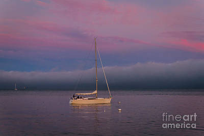 Sausalito Photograph - Moorings by Mitch Shindelbower
