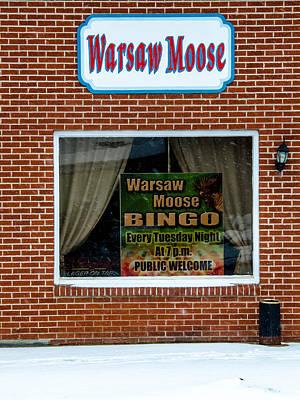 Photograph - Moose Bingo by Guy Whiteley