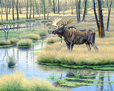Yellowstone Painting - Moose Country by Paul Krapf