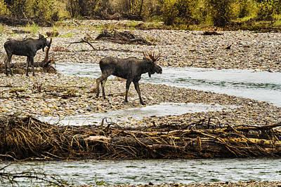 Open Impressionism California Desert - Moose Crossing River No. 1 - Grand Tetons by Belinda Greb