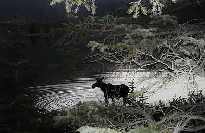 Moose Has Happy Hour Art Print by Cathy Long