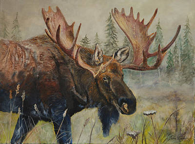 Meadow Willows Painting - Moose On The Move by Alvin Hepler