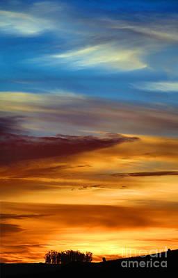 Global Design Shibori Inspired - Sunsight Colors by Wernher Krutein