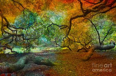 Angel Island State Park Photograph - More Colors by Kathleen Struckle