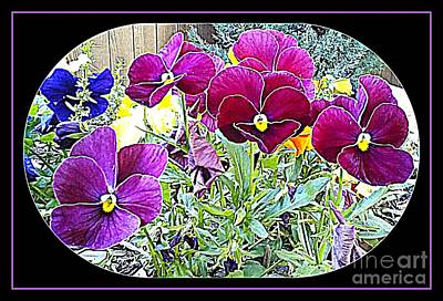 Photograph - More Flowers 5 by Cindy New