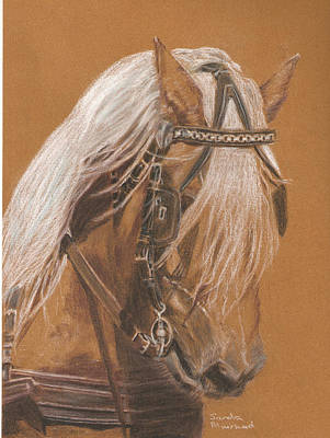 Pastel - More From Fer A Cheval by Sandra Muirhead
