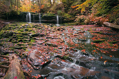 More Moss And Autumn Leaves Than Water Art Print by Gene Walls