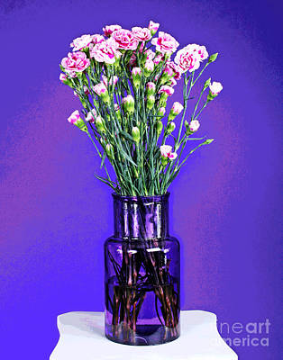 Photograph - More Pink Carnations by Larry Oskin