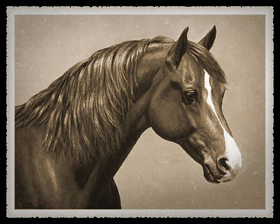 Sorrel Horse Painting - Morgan Horse Old Photo Fx by Crista Forest