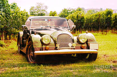 Morgan Plus 4 In Front Of Vineyard Art Print by Perry Van Munster