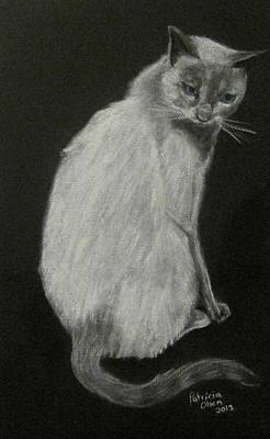Painting - Moriah The Cat by Patricia Olson
