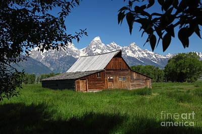 Photograph - Mormon Row Barn by Bill Singleton