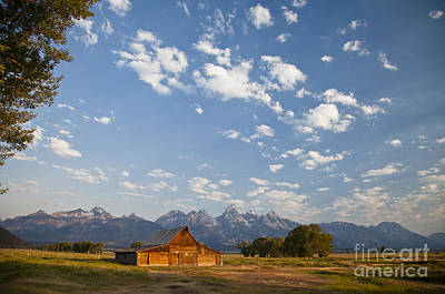 Photograph - Mormon Row Early Morning 1 by Olivier Steiner