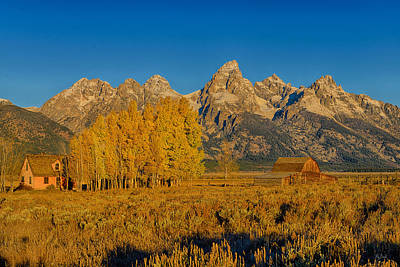 Photograph - Mormon Row Morning by Greg Norrell