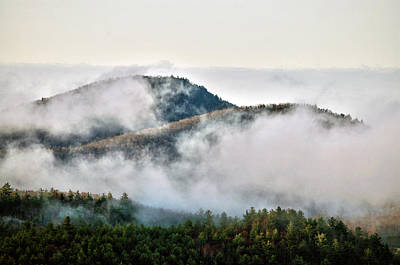 Art Print featuring the photograph Morning After The Storm by Allen Carroll