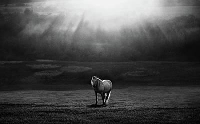 Slovakia Photograph - Morning Appearance by