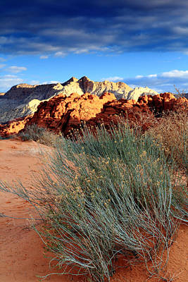 Photograph - Morning At Snow Canyon State Park by Eric Foltz