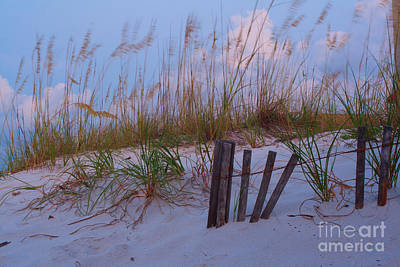 Photograph - Morning Beach Breeze And Grass by Ben Sellars