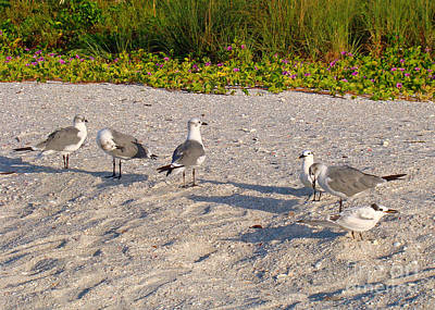 Pop Art - Morning Beach Cleaning Crew by Nancy L Marshall