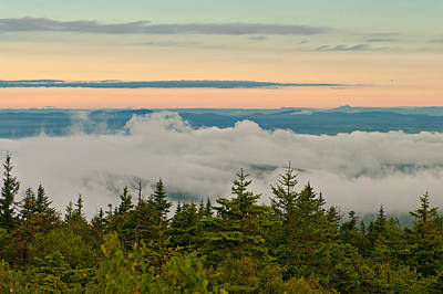Photograph - Morning Blanket by Paul Mangold