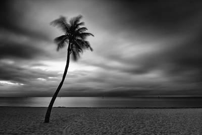 Photograph - Morning Breeze by Stefan Mazzola
