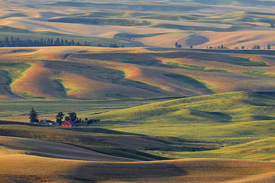 Contour Farming Photograph - Morning Calm by Latah Trail Foundation