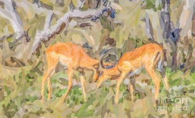 Animals Digital Art - Morning Clash by Liz Leyden