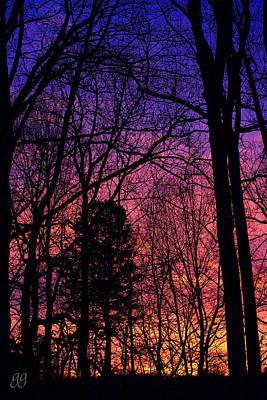 Photograph - Morning Colours by Geri Glavis
