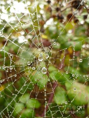 Print featuring the photograph Morning Dew by Vicki Spindler